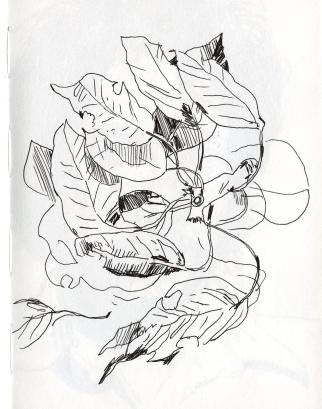 Leaves002